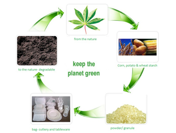 biodegradable plastic from gabi leaves And even biodegradable plastics require the use of plasticizing reseach by gabi foster 1 the production of plastic begins with a distillation process in an oil.