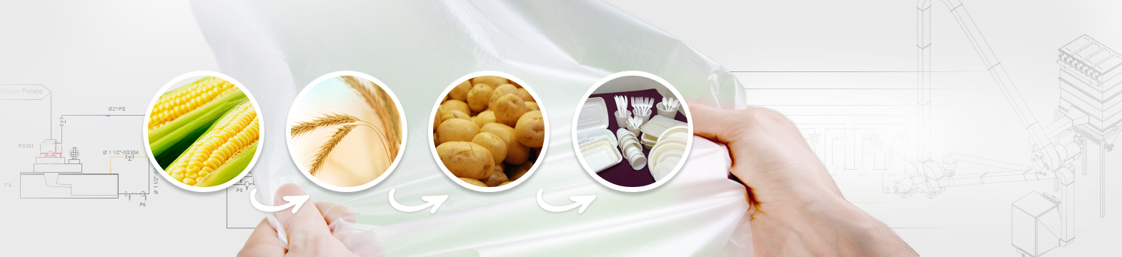 Starch Processing and Technologies